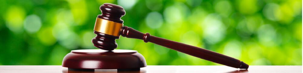 弁護士をイメージした画像